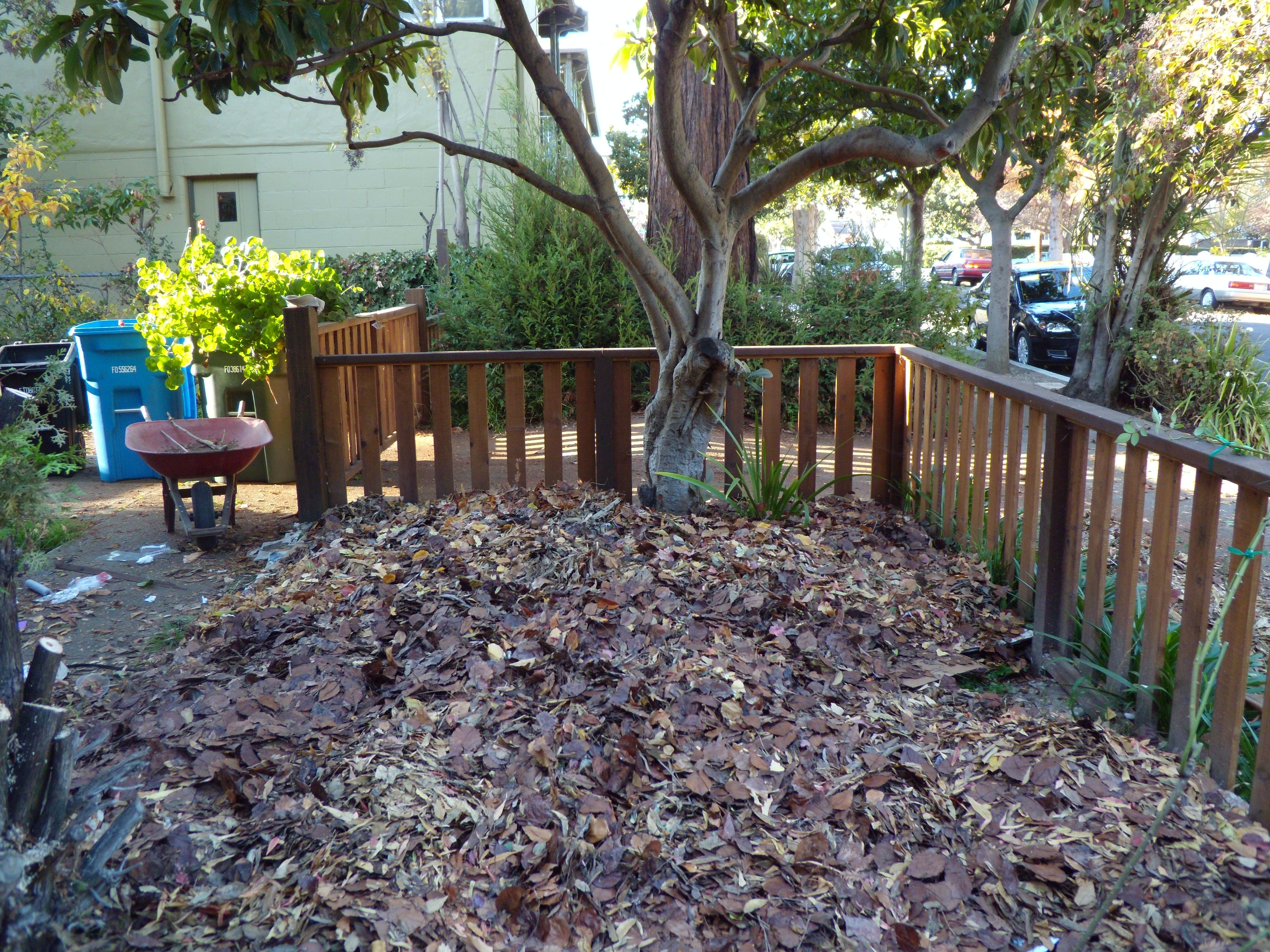 compost and mulch overall gardener