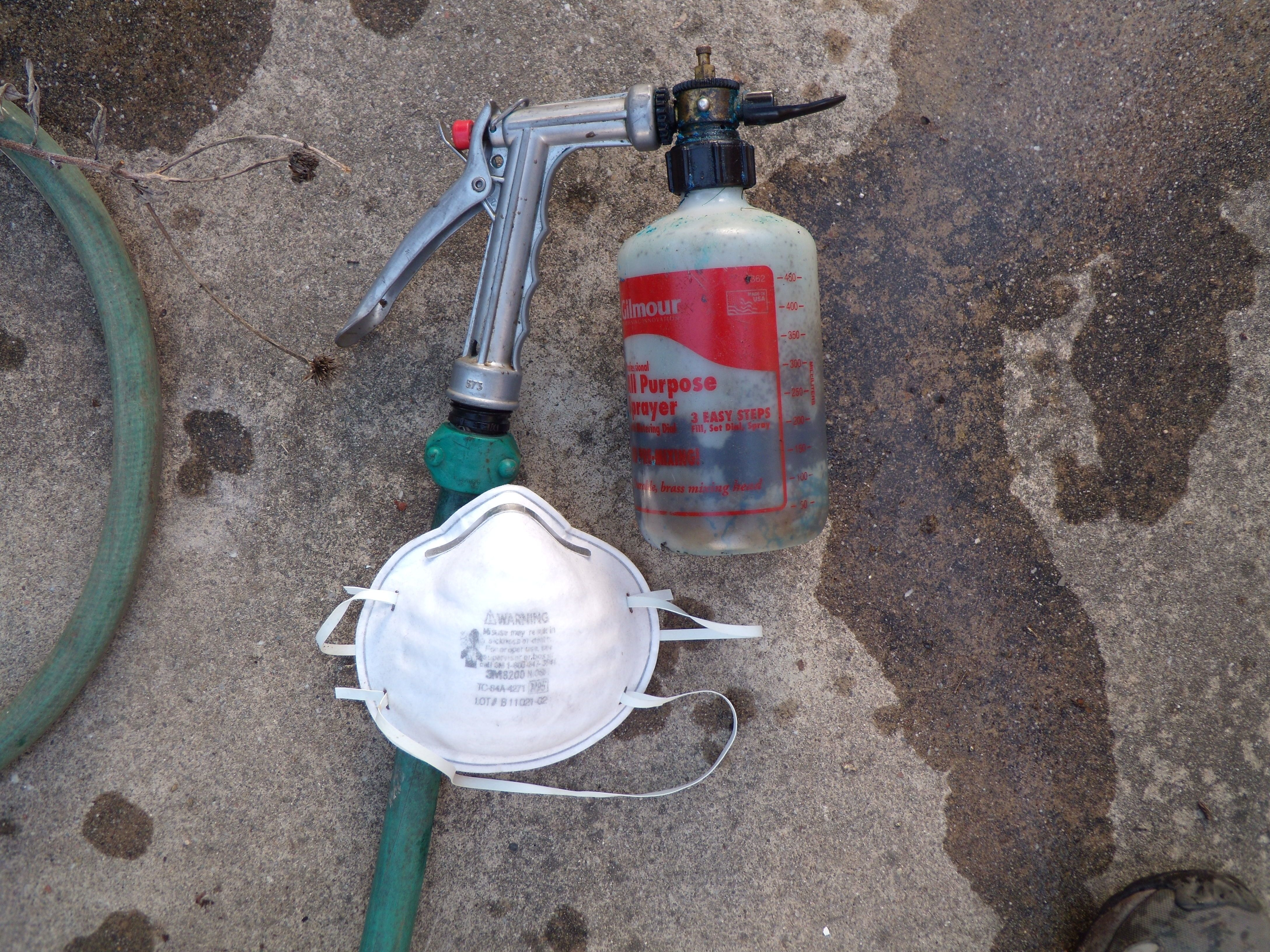 when to apply dormant oil to fruit trees home design inspirations