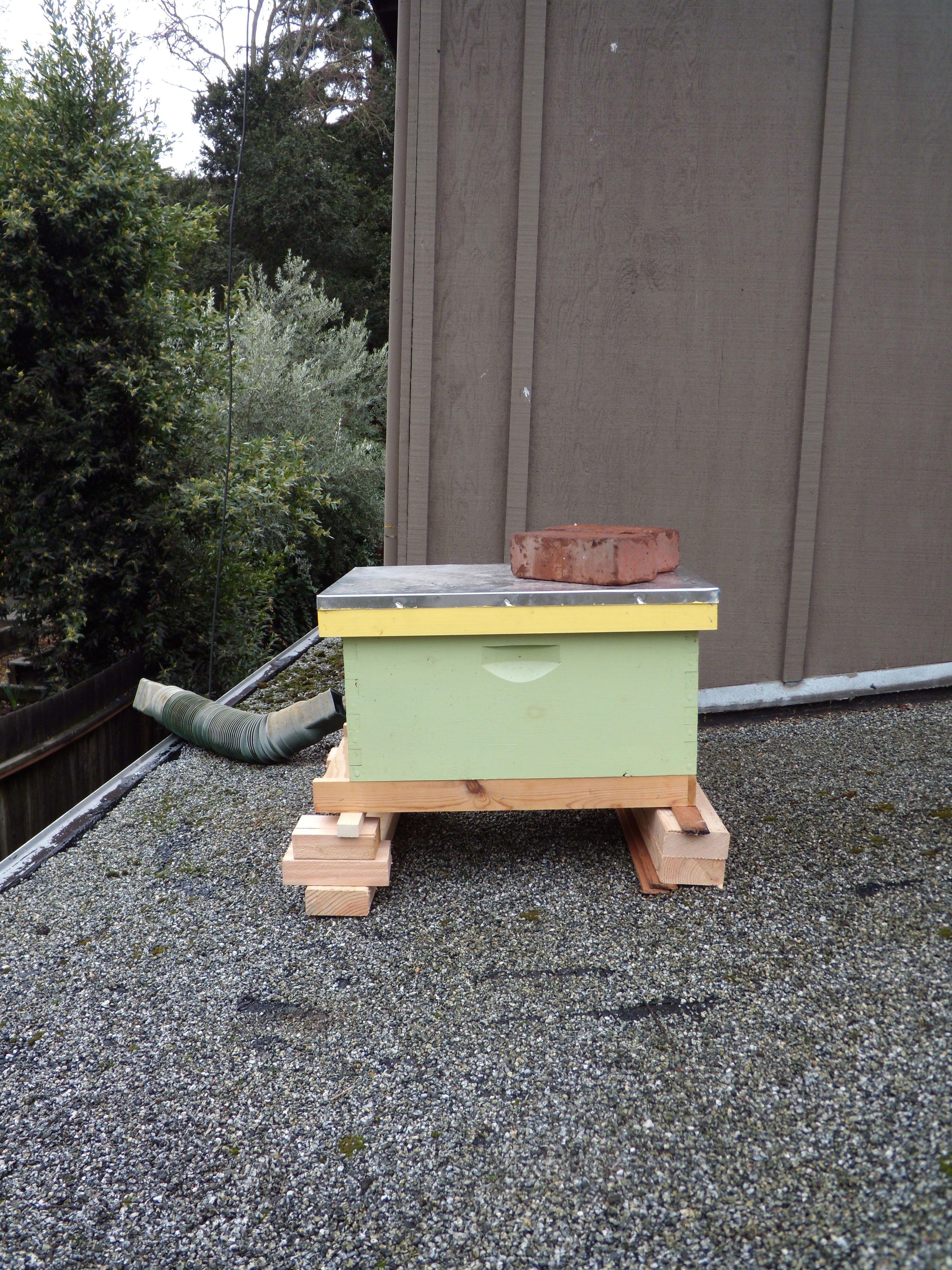 Rooftop Beekeeping Overall Gardener