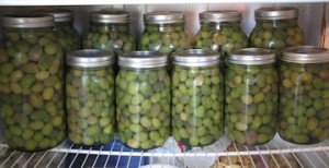 Olives are stored in fridge in 2-quart/half-gallon and 1-quart jars. Ok, maybe next year I'll be pressure canning them.